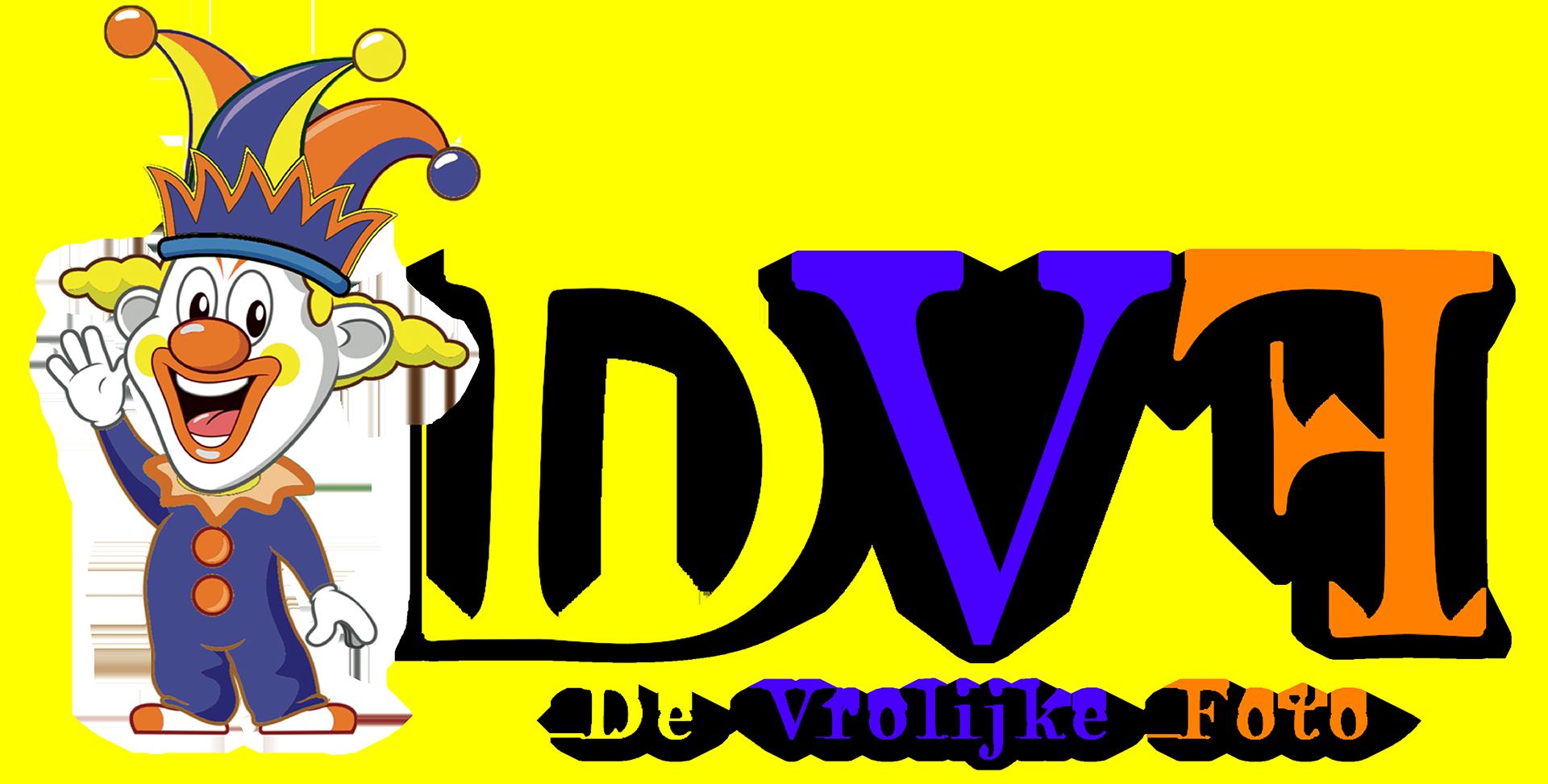 DVF DEFINITIEFkopie
